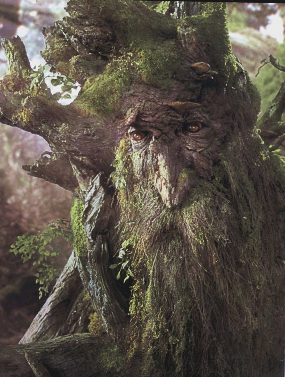 treebeard the ent voices from russia. Black Bedroom Furniture Sets. Home Design Ideas