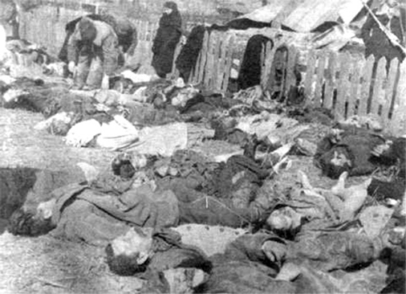 Polish civilian victims of the nazi collaboratonist upa in volhynia