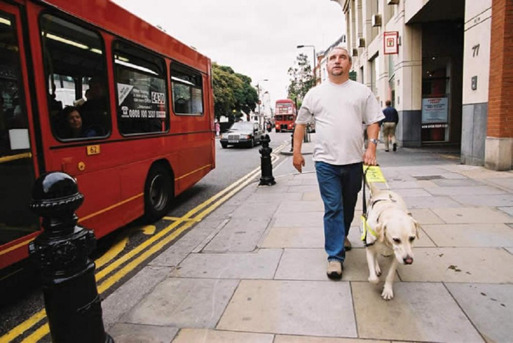 In england refuse to carry blind people with guide dogs guide dog
