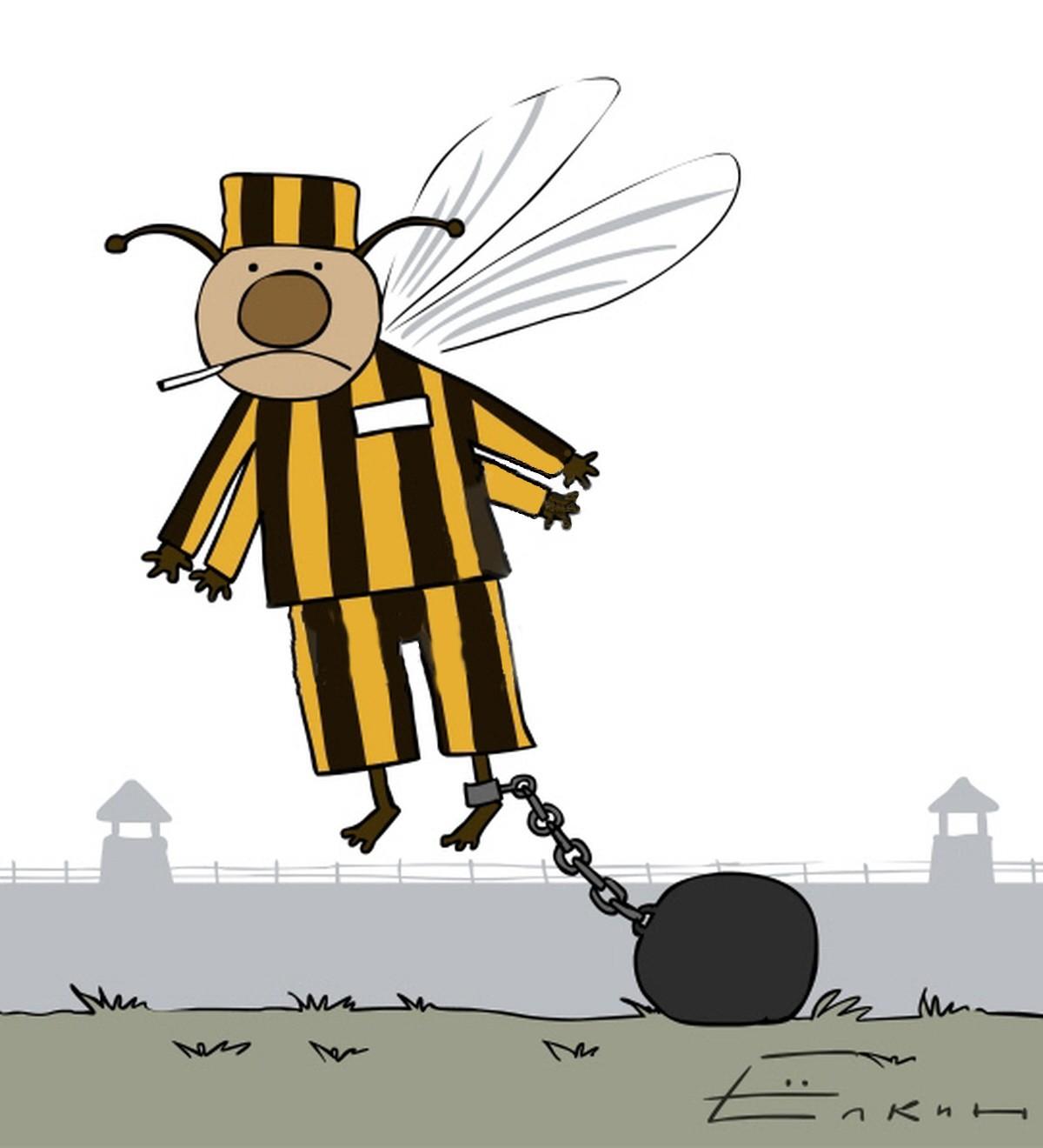 Sergei Yolkin. Bees in the Slammer. 2010