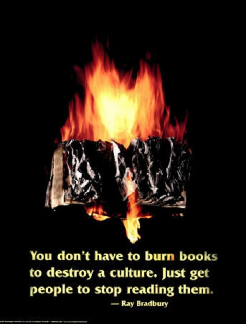 01 You Don't Have to Burn Books