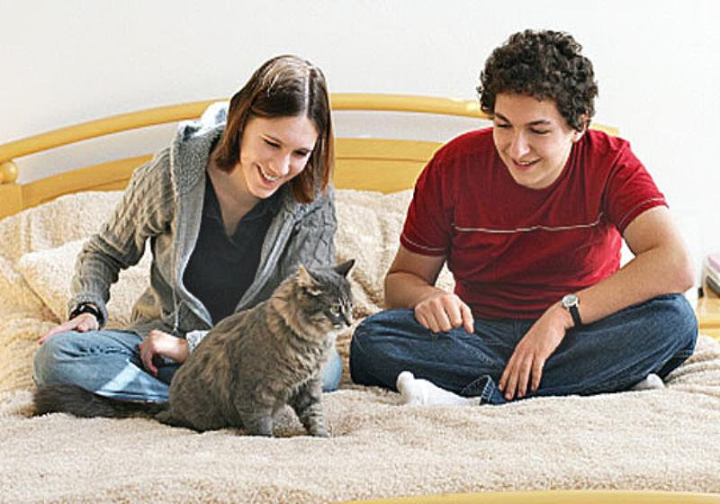01 Couple with young cat
