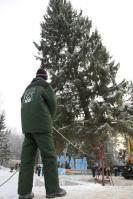 01n Cutting Down the Kremlin Xmas Tree 2010
