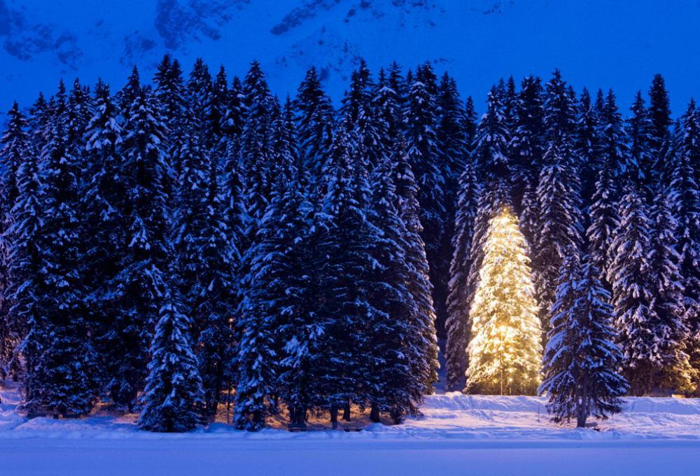 A Multimedia Presentation The Spirit Of Christmas