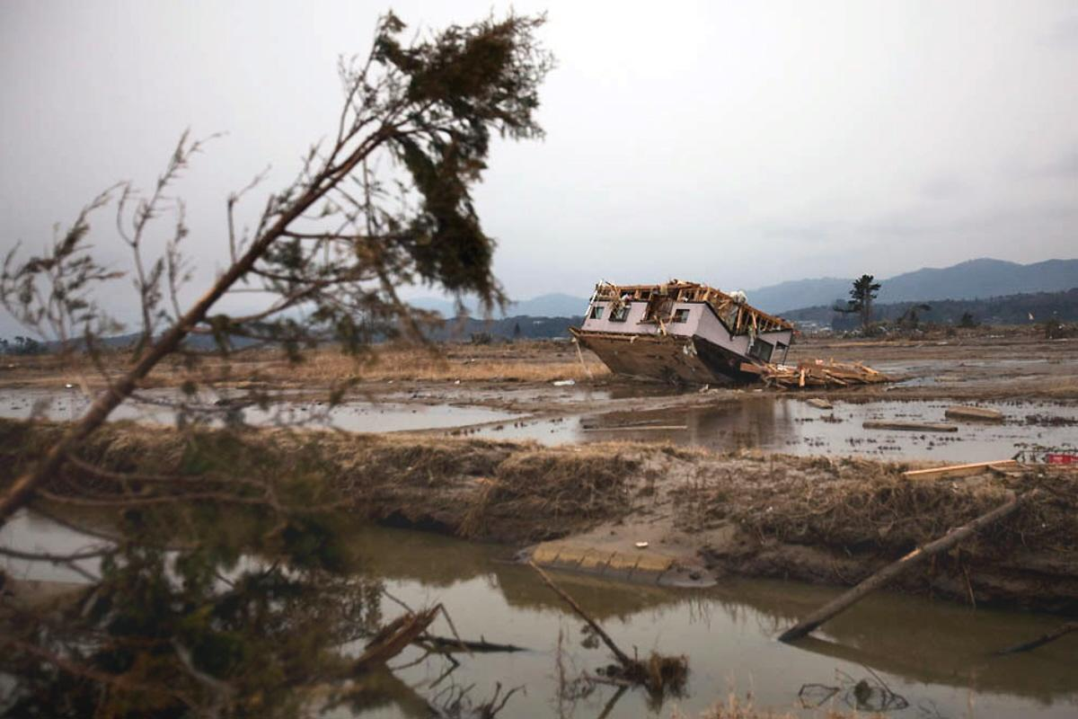 japanese tsunami essay