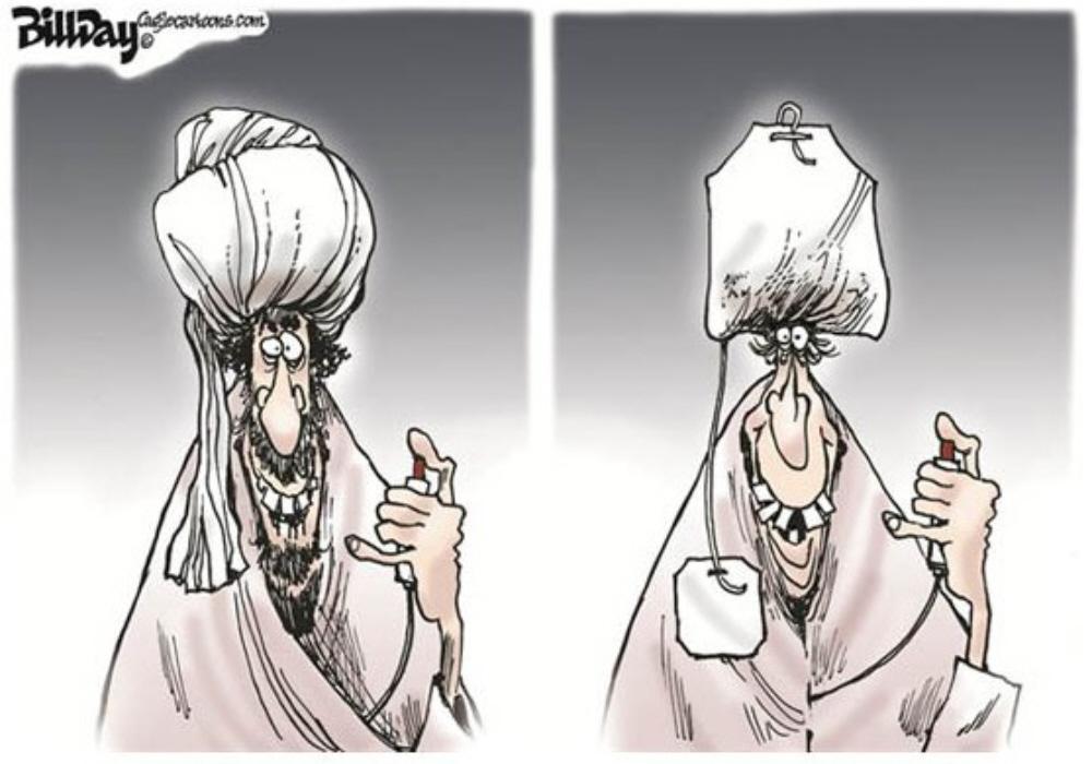 01d Political Cartoons 08.11