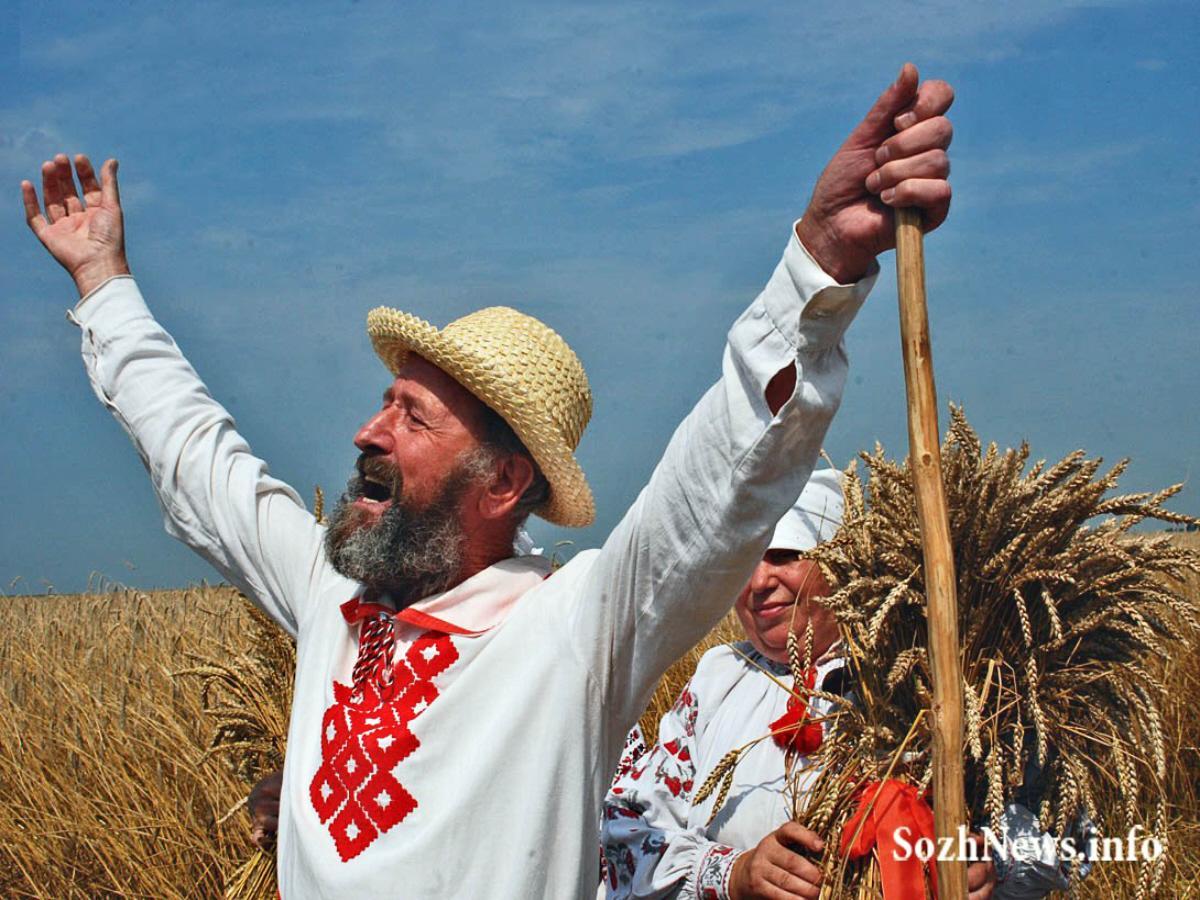 02l Harvest in Byelorussia
