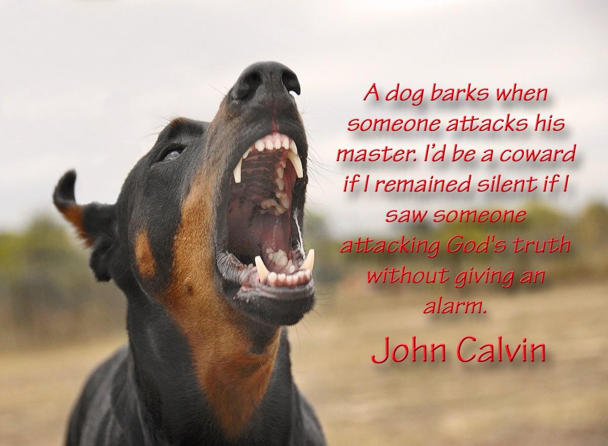 00 John Calvin 04.12