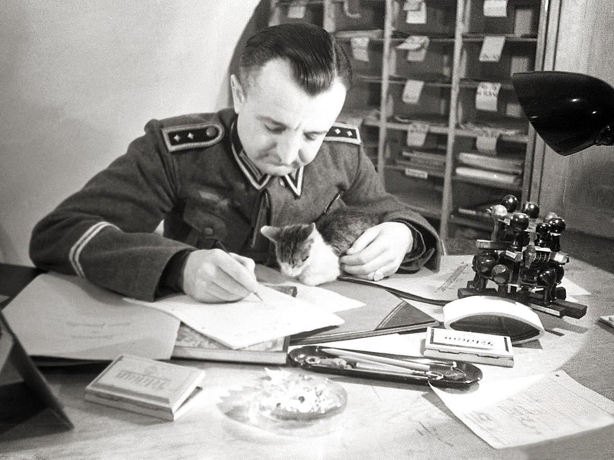 yugoslavia essay