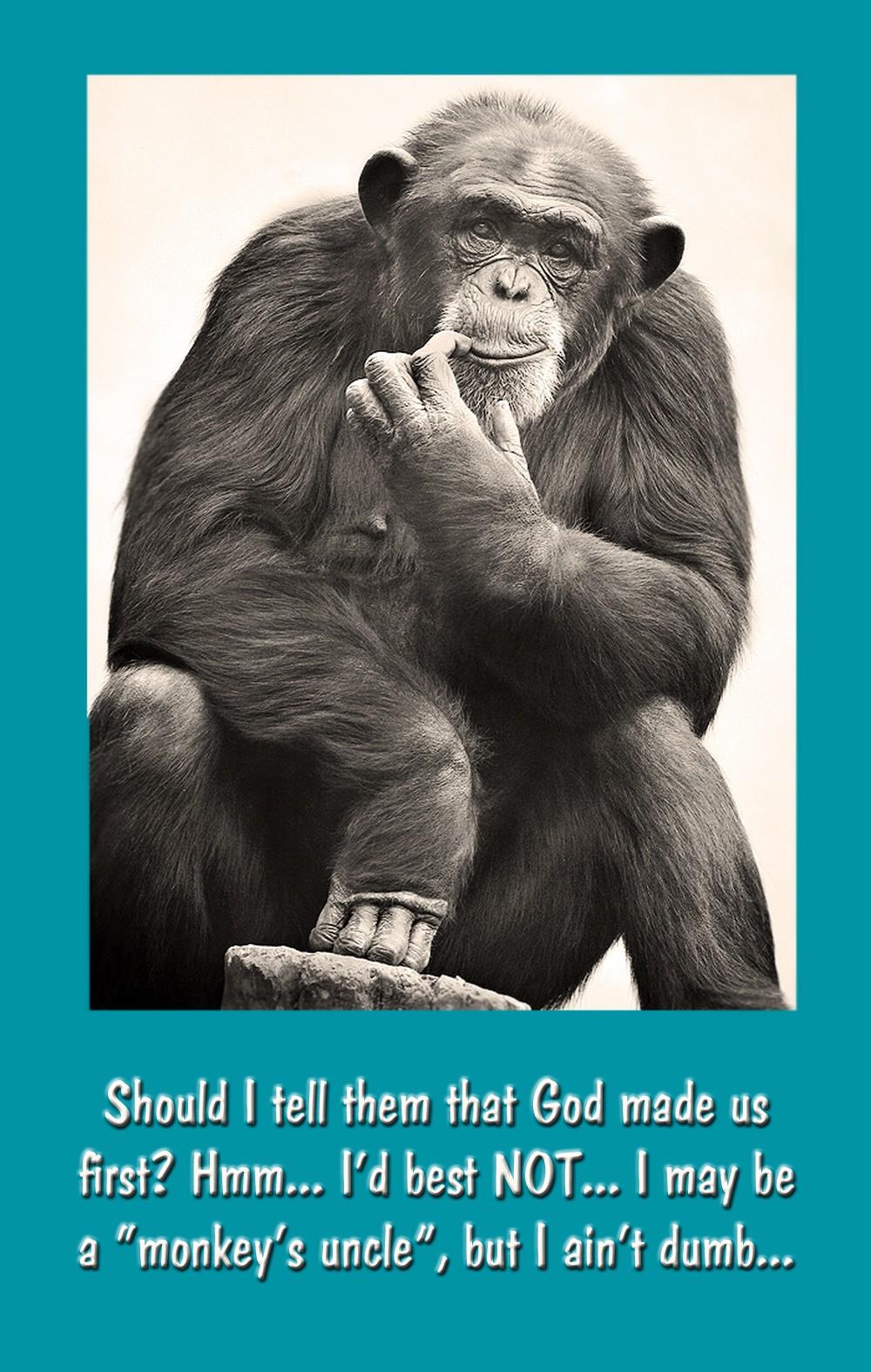 00 Monkey Thinker 30.09.12