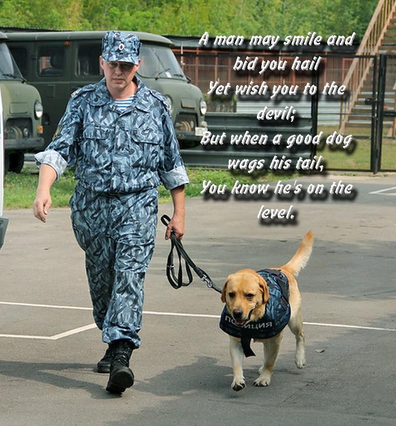 00 MVD Dog Service. 09.12