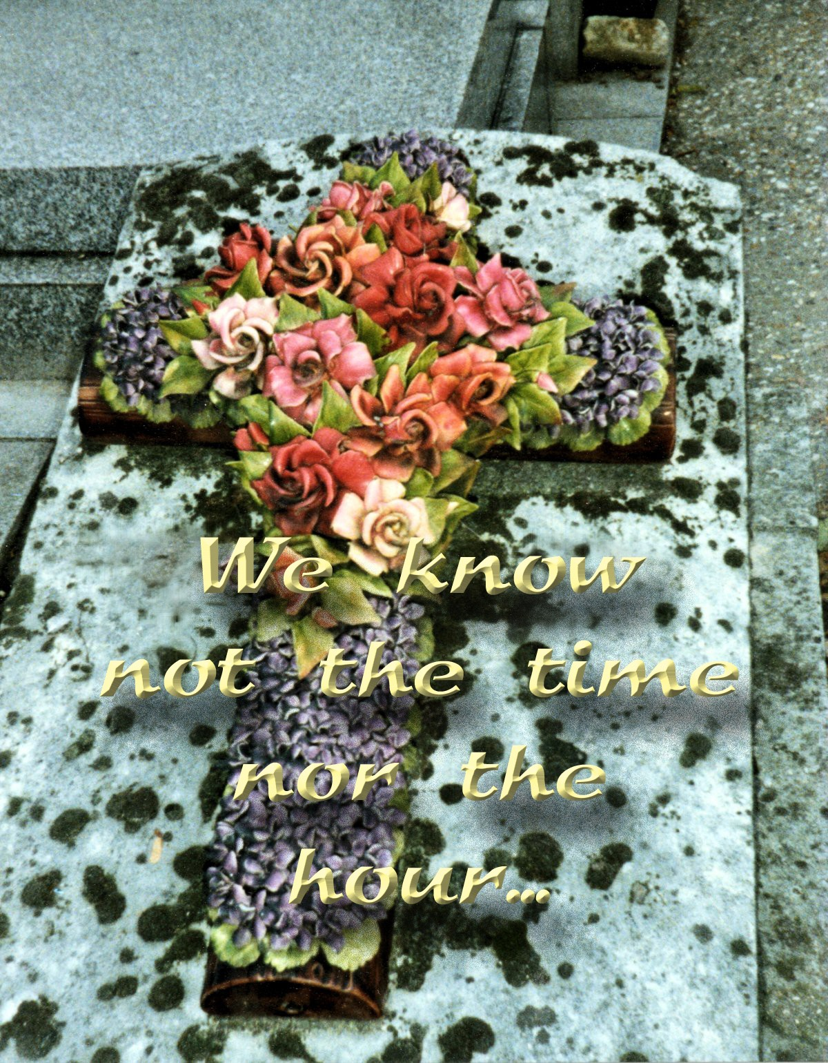 00 flowers on grave. 18.11.12