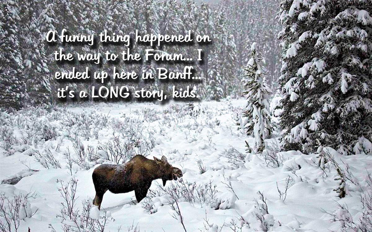 00 Banfff National Park. AB Canada. 02.12.12
