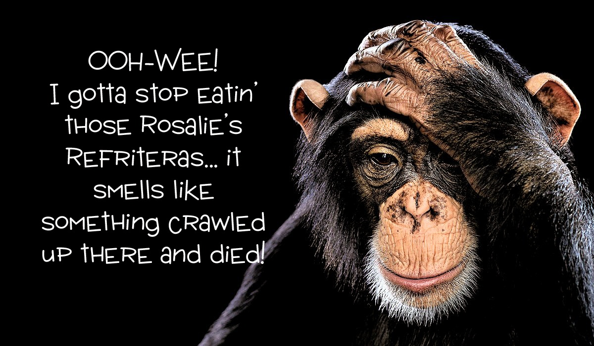 00 Chimp Fun. Gotta Stop Eatin' Those Rosalie
