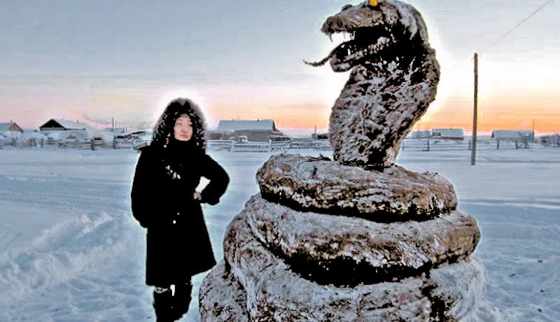 00 dung Cobra Snake in Yakutia 02. 12.01.13