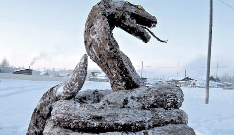 00 dung Cobra Snake in Yakutia. 12.01.13