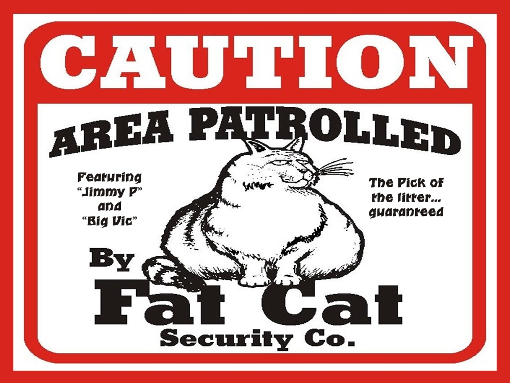 00 Fat Cat Security Company. 04.02.13