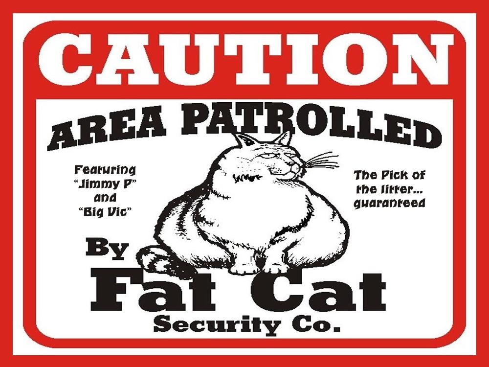 00-fat-cat-security-company-04-02-13.jpg