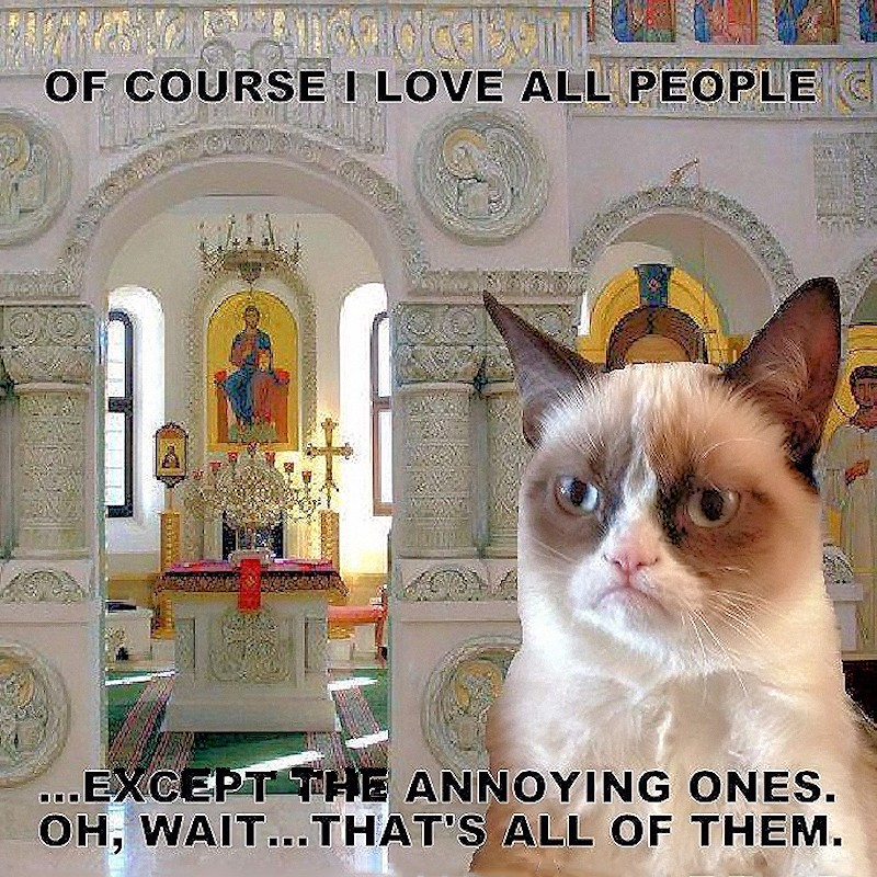 00 Orthodox Grumpy Cat 01. 24.05.13