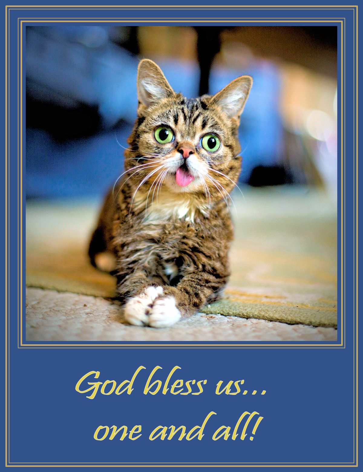 00 Lil Bub the Internet Cat. God Bless Us. 15.06