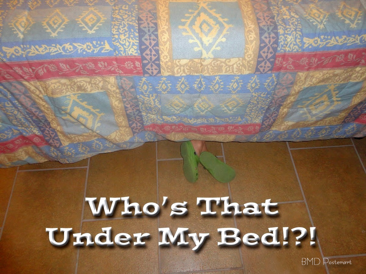 00 Who's that under my bed. 09.12