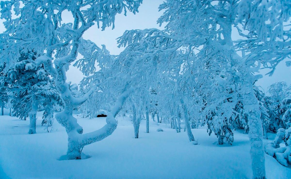 00 Russian Buddhist datsan. Sverdlovsk Oblast. Image F. 21.12.13