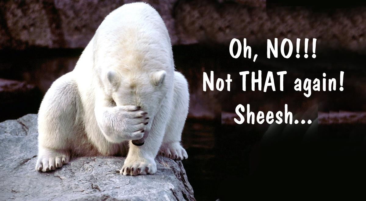 00 aghast polar bear. Oh, NO!!! 04.01.14