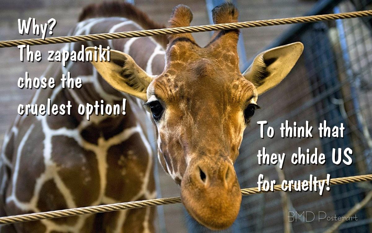 00 Marius the giraffe. 11.02.14