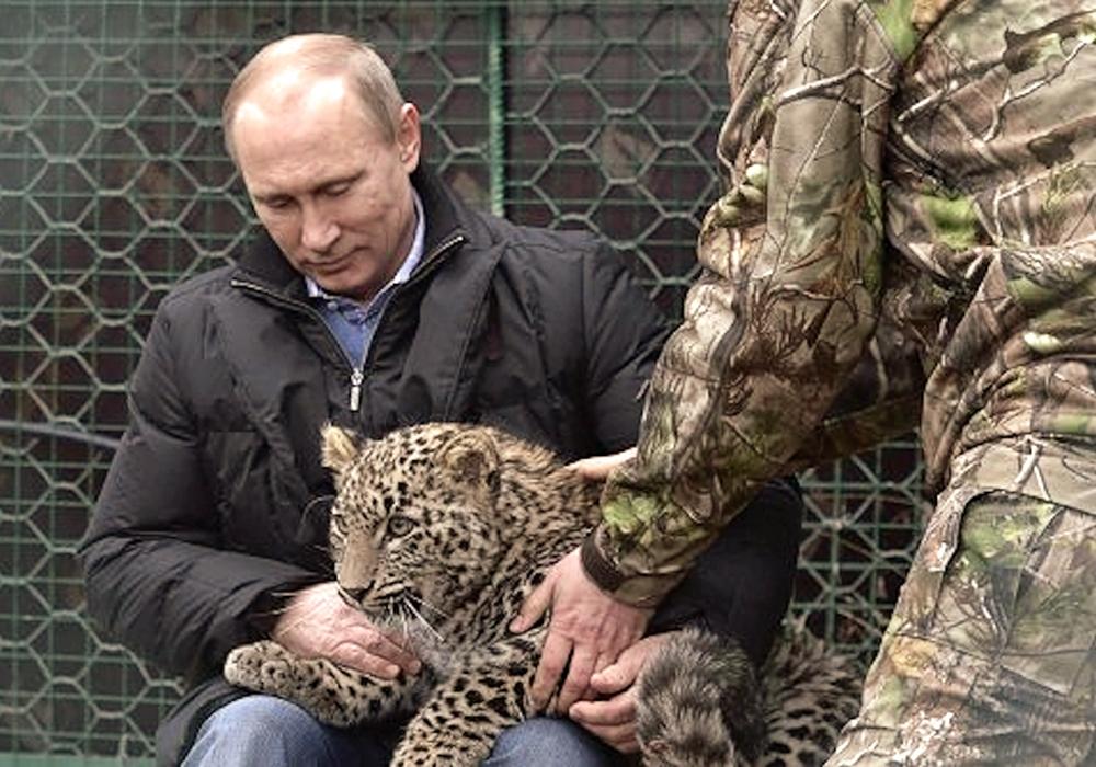 00 Putn and leopard in Sochi. 04.02.14