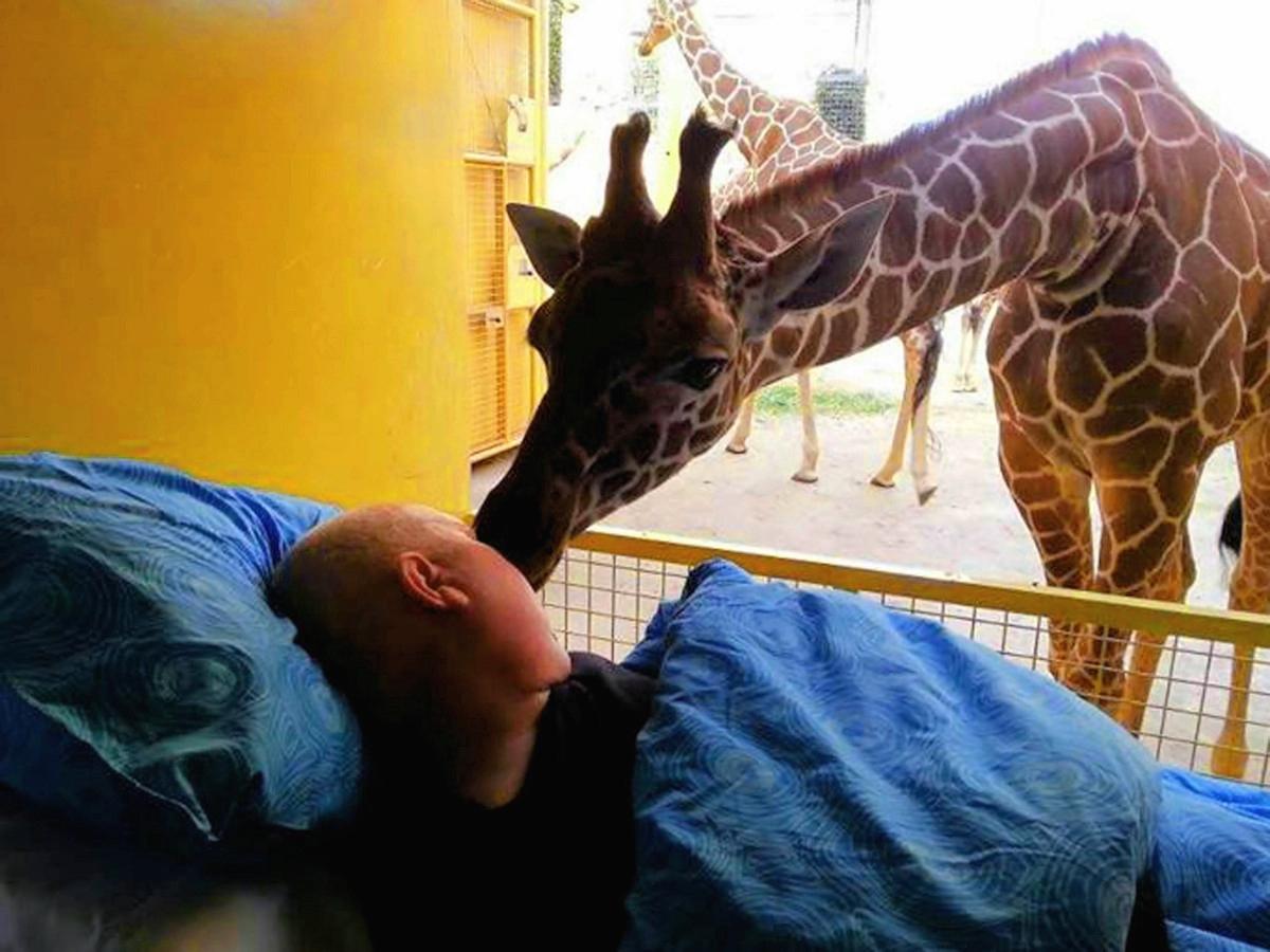 00 Giraffe says goodbye to zoo worker. 21.03.14