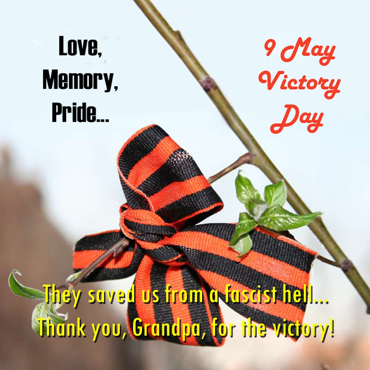 00 9 may. victory day 01. 08.10.14