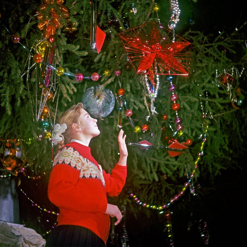 Фестиваль новогодних елок