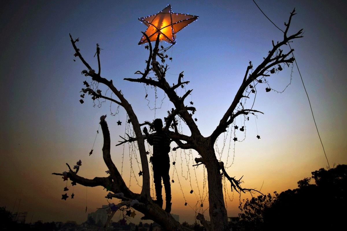 00 New Year Trees 12. Islamabad Pakistan. 01.01.15