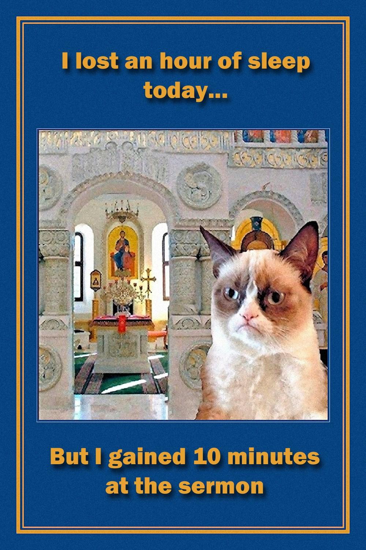 00 grumpy cat. time change. 08.03.15