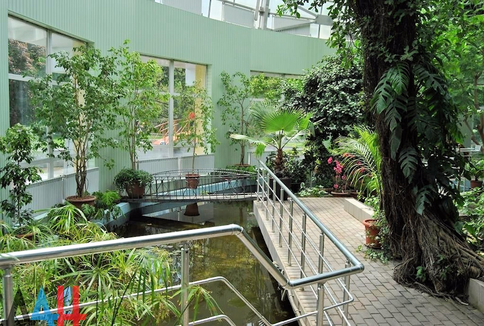 00 donetsk botanical garden 02. 20.05.15