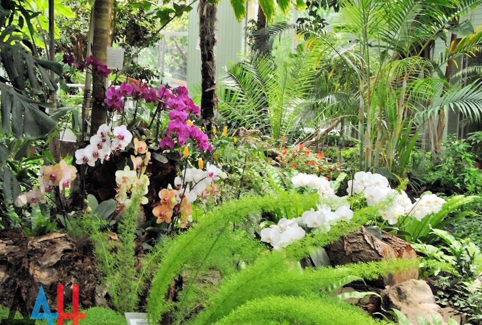 00 donetsk botanical garden 03. 20.05.15