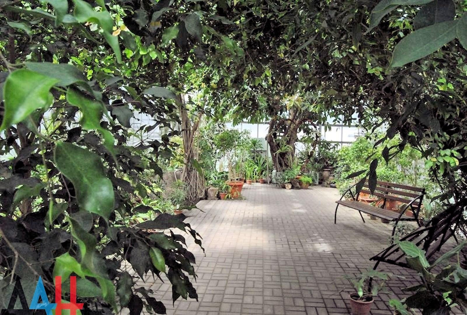 00 donetsk botanical garden 05. 20.05.15