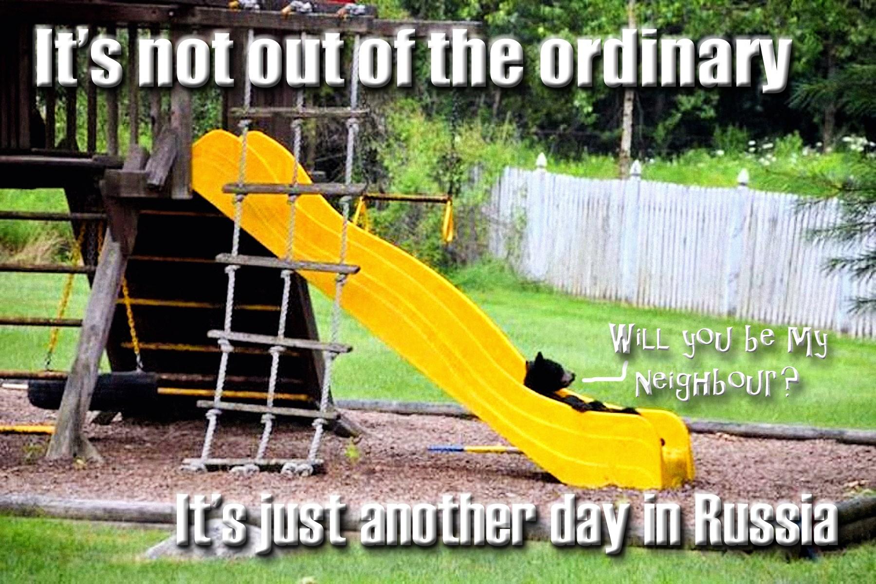 00 bear on slide... 250715