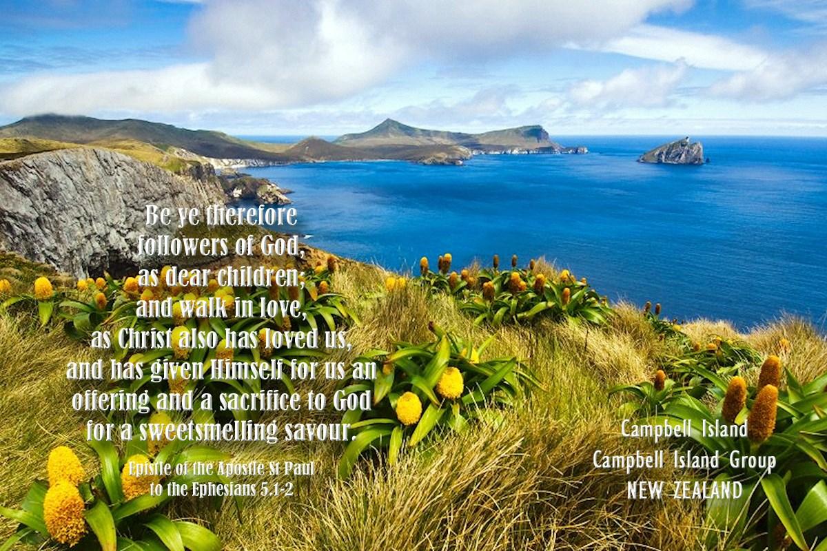 00 Campbell Island. New Zealand. ephesians. 070715