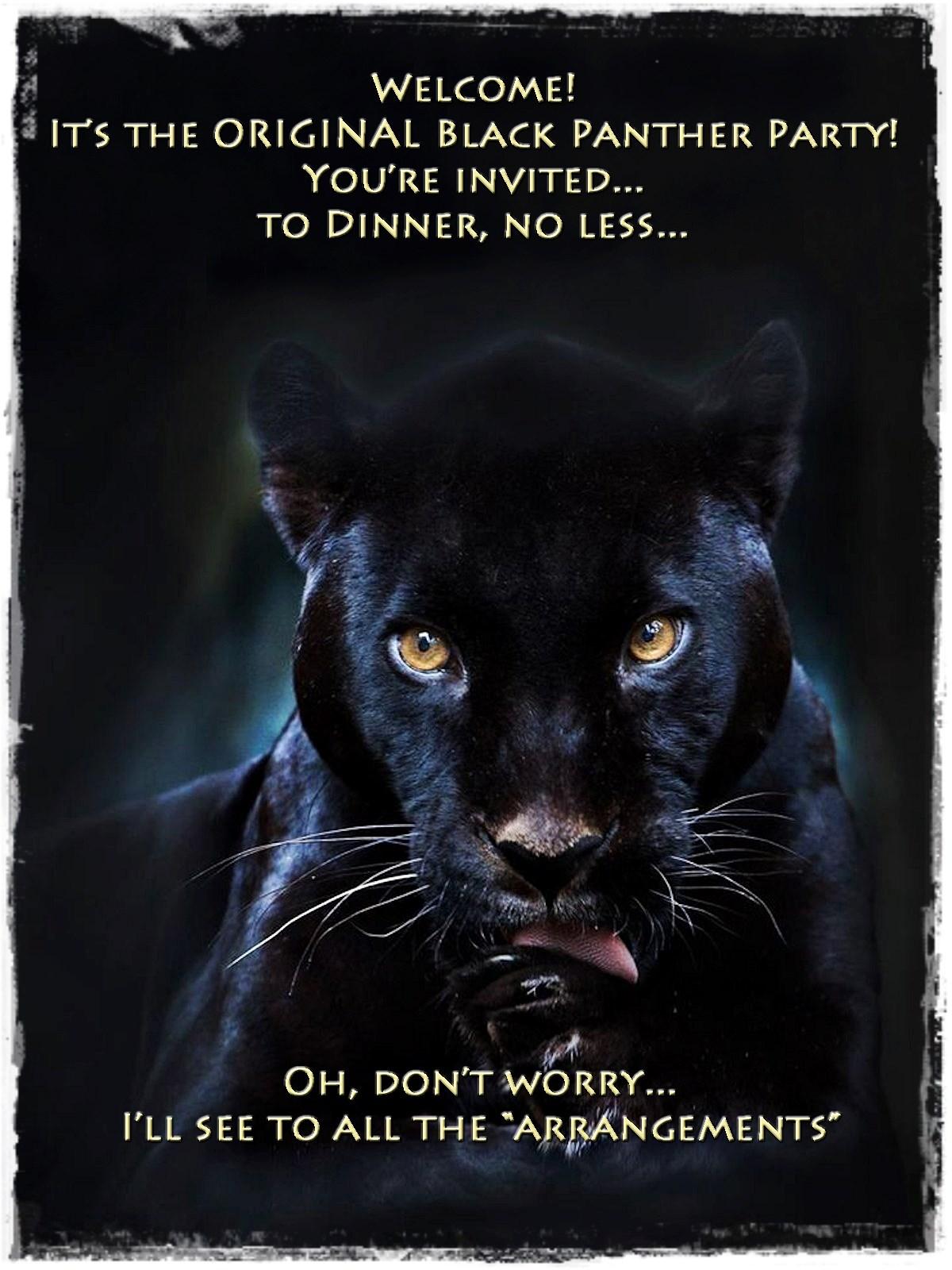 00 black panther 220815