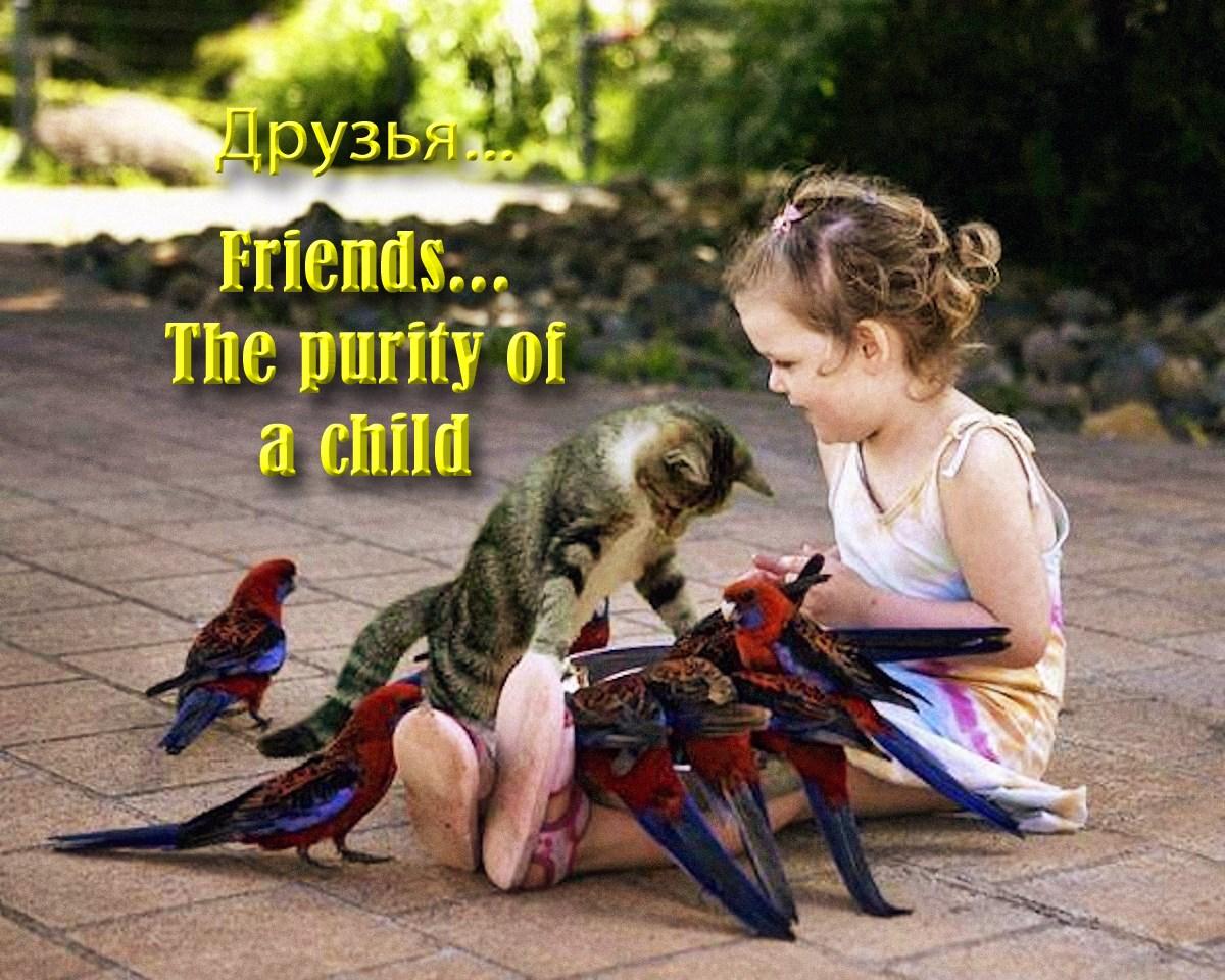 00 Friends 130815