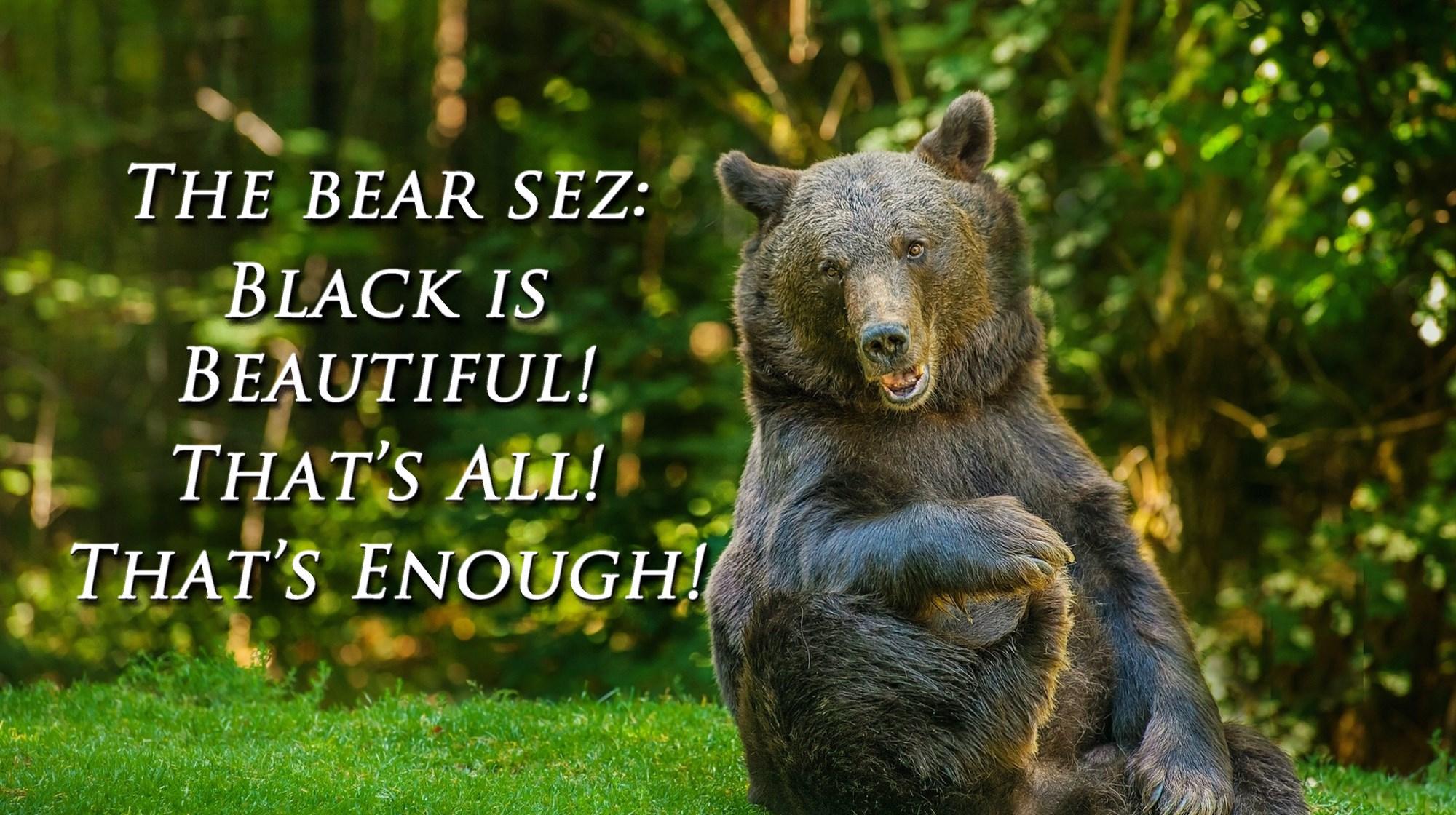 00 happy bear. the bea sez. 240815