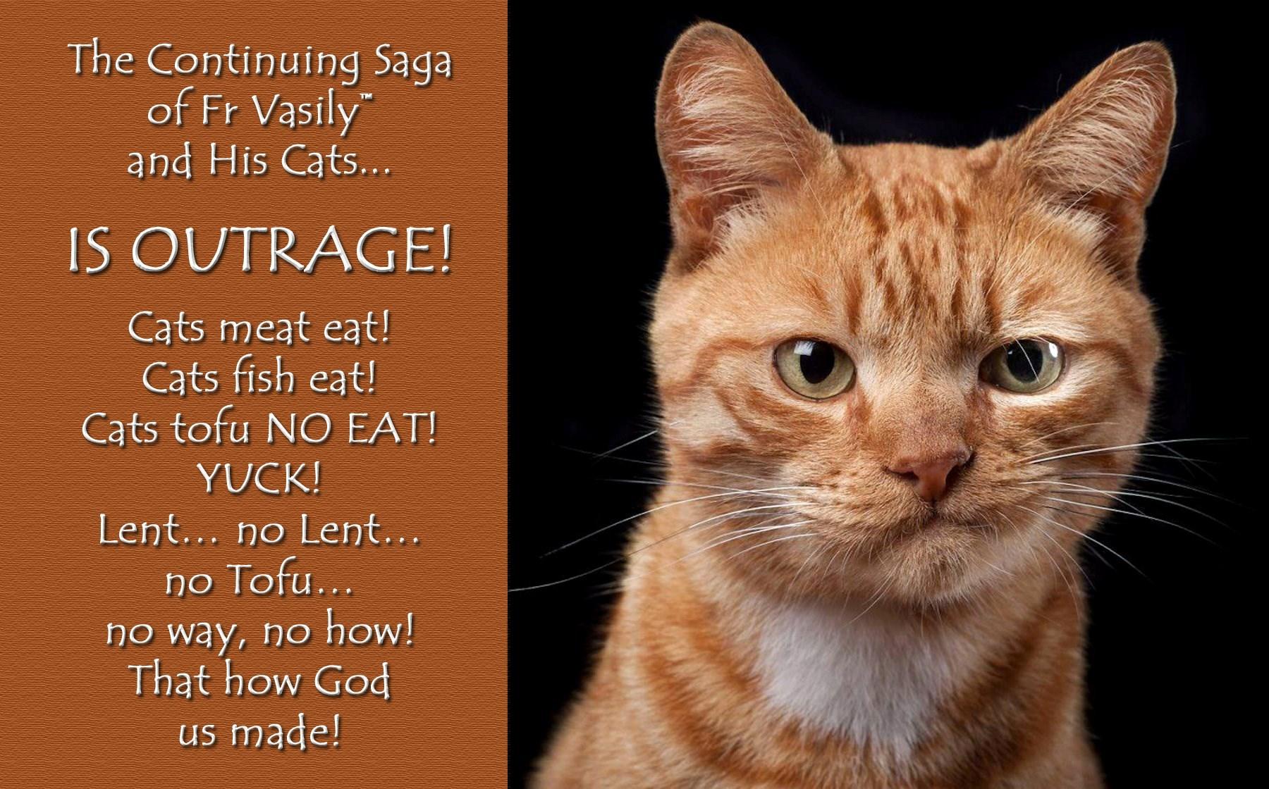 00 cat 01 070915