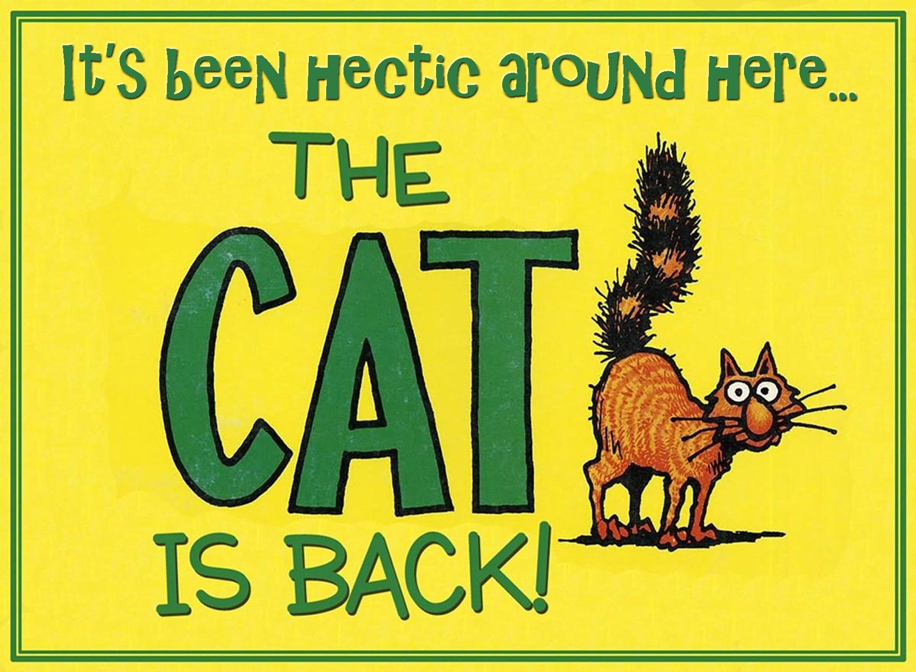 00 cat's back hectic few days 020915