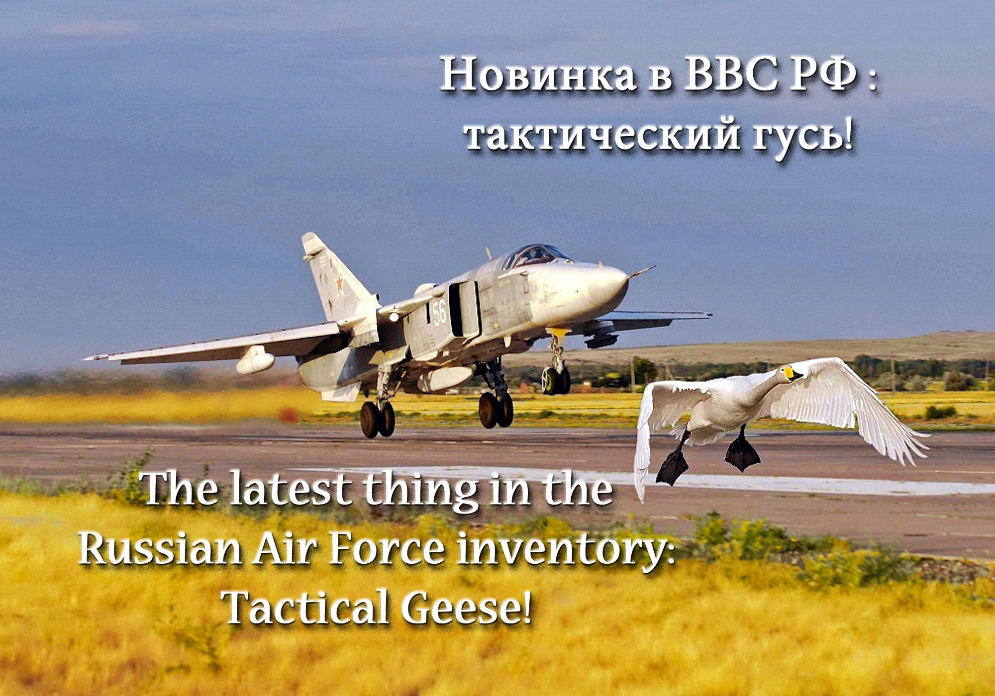 00 russian air force tacitcal goose 200915