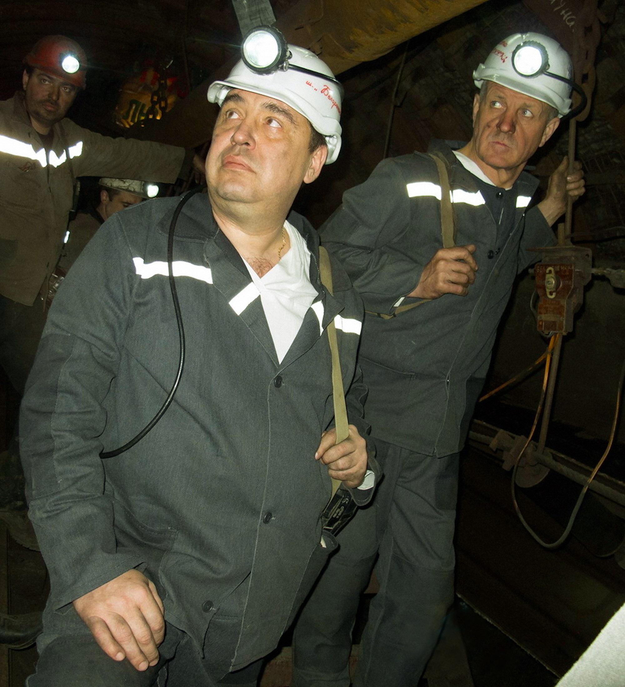 00 LNR 2015 27 plotnitsky miner