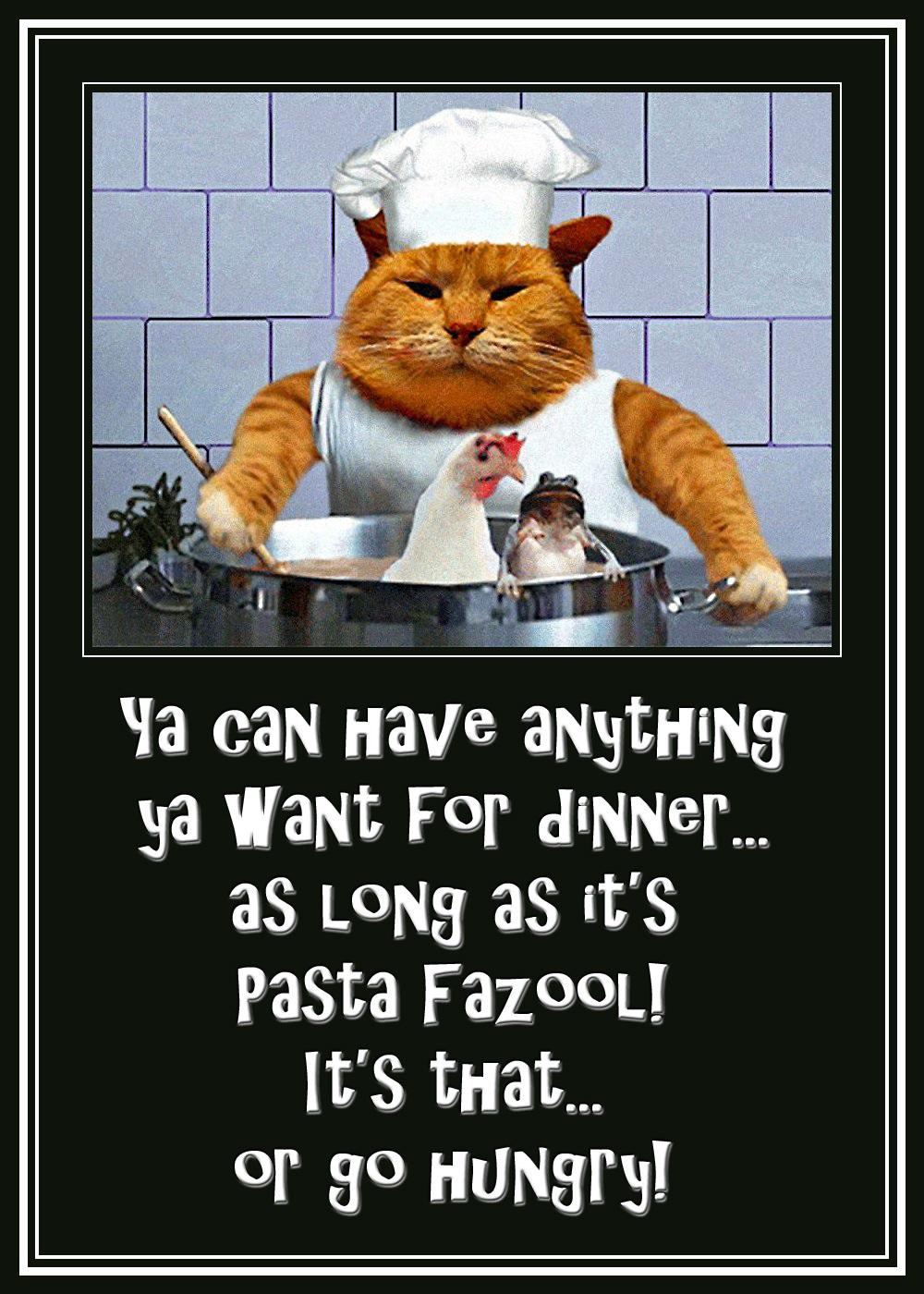 00 cat cook 070316