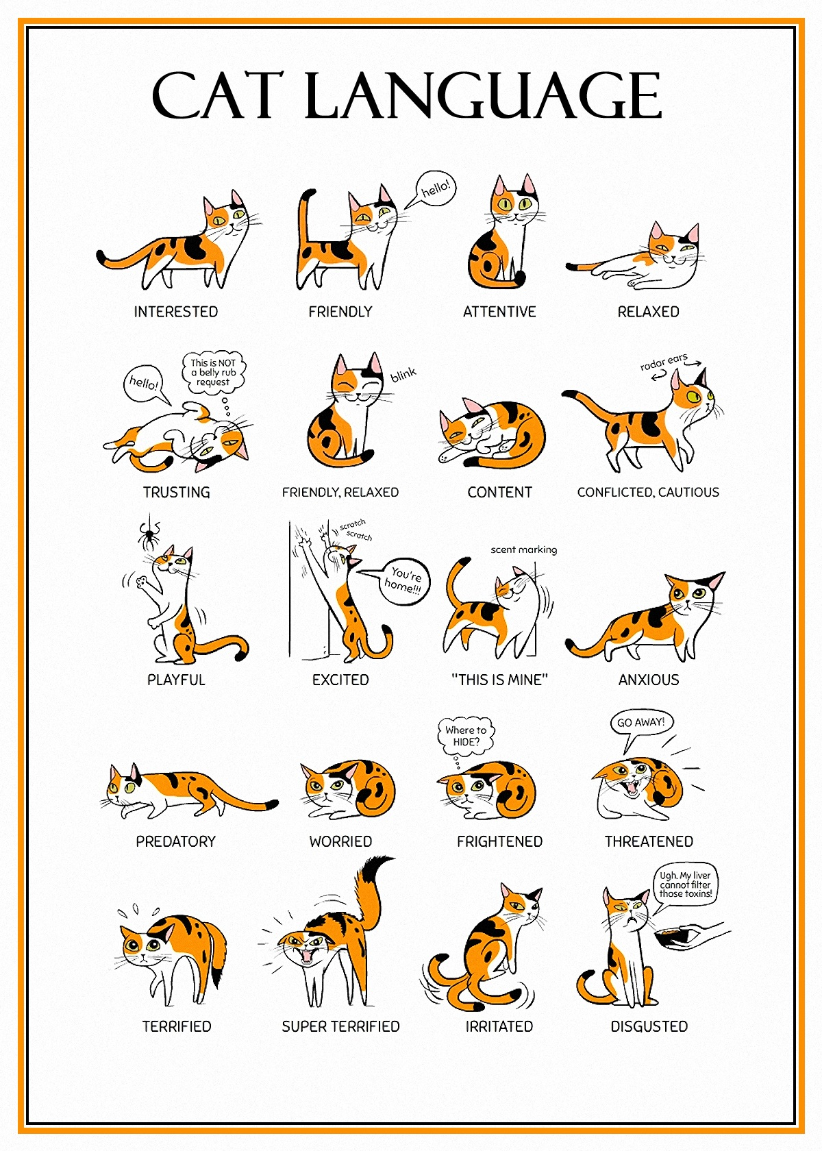00 cat language 210516