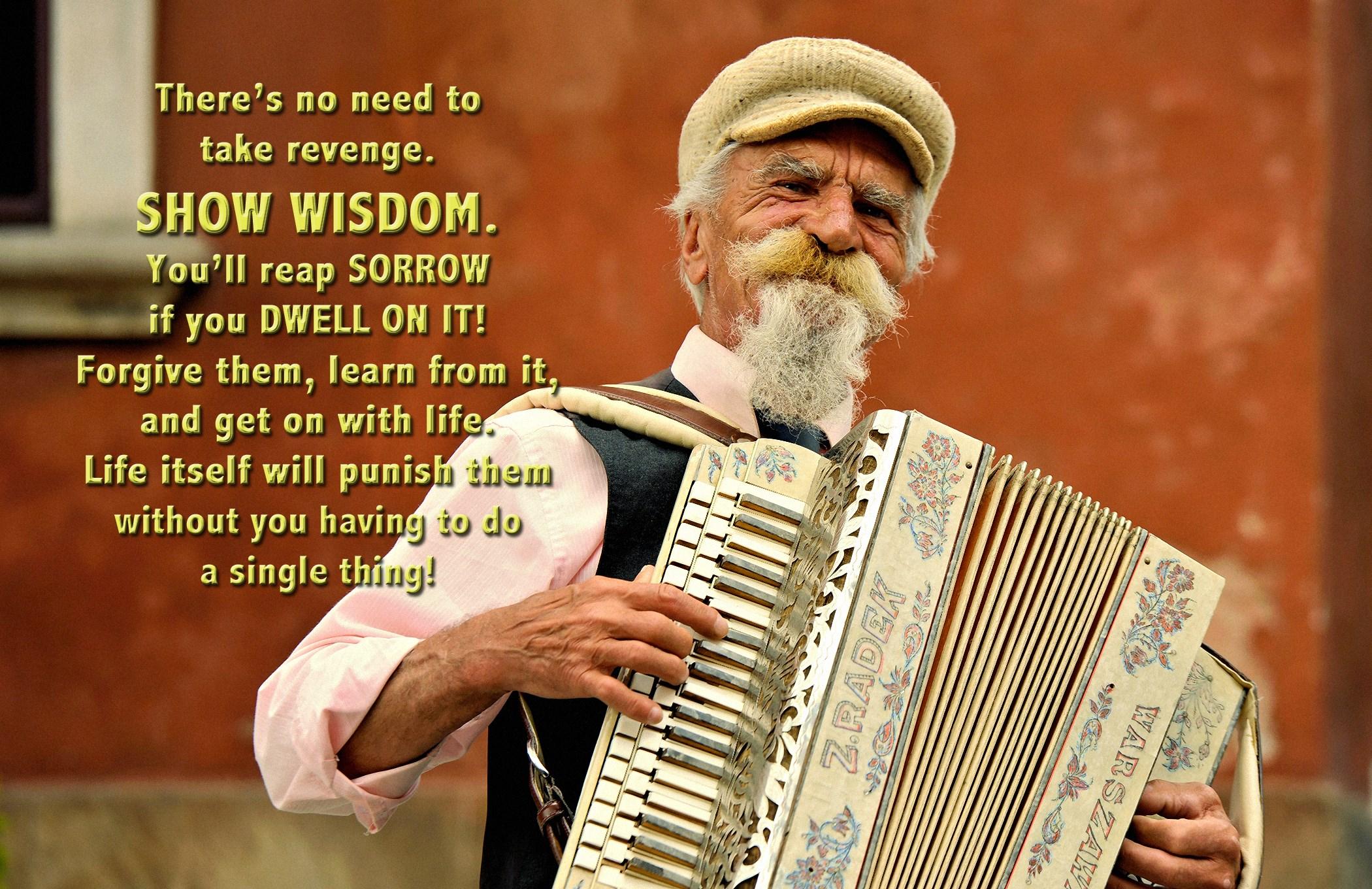 00 show wisdom man with accordion poland 160616