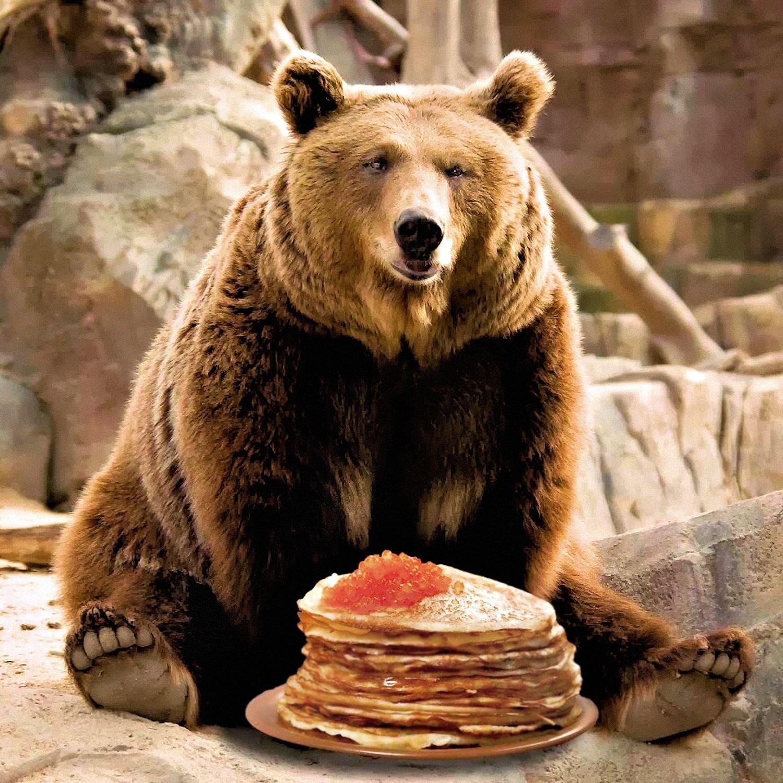 00 bear and blini 220716